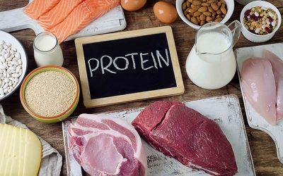 وعده پروتئینی بعد از تمرین بدنسازی چگونه باید باشد؟